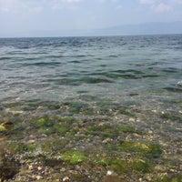 Photo taken at Eregli Tıstıs Beach by Elif E. on 7/30/2016