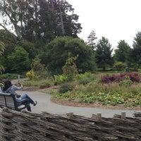 Photo taken at John McLaren Memorial Rhododendron Dell by Lana C. on 8/6/2013