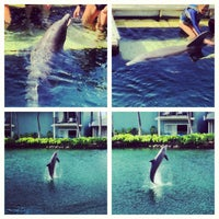 Photo taken at The Kahala Hotel & Resort by Kat L. on 5/25/2013