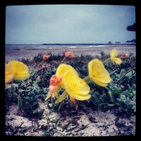 Photo taken at Lighthouse Beach And Bird Sanctuary by Hans W. on 4/18/2013