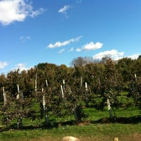 Photo taken at Honey Pot Hill Orchards by Forever Slender M. on 10/21/2012