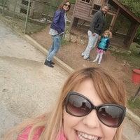 4/5/2015 tarihinde Seçil M.ziyaretçi tarafından Piknik Park Polonezköy Petting Zoo'de çekilen fotoğraf