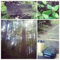Das Foto wurde bei Llandover Woods von Jessie M. am 5/18/2014 aufgenommen