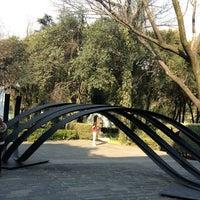 Photo prise au Museo de Arte Moderno par Karina M. le1/12/2013