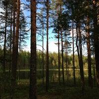 Photo taken at Озеро Подрывное by Валентина Д. on 6/9/2013