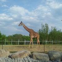 Photo taken at Toronto Zoo by Lana B. on 5/24/2015