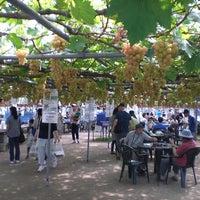 10/27/2016 tarihinde 坂上ぶどう園ziyaretçi tarafından 坂上ぶどう園'de çekilen fotoğraf
