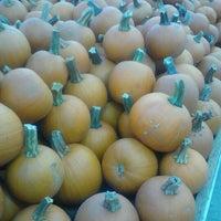 Photo taken at Nicks Garden Center & Farm Market by Heather H. on 10/20/2012