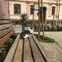 Das Foto wurde bei Ali İsmail Korkmaz Parkı von Alpaslan Ş. am 3/21/2017 aufgenommen