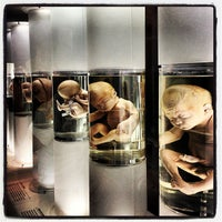 Photo taken at Museo de Medicina by Chac G. on 2/8/2013