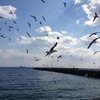 3/23/2013 tarihinde Bircan K.ziyaretçi tarafından Tekirdağ Sahil'de çekilen fotoğraf