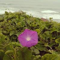 Foto tomada en Parque María Reiche por Joel Q. el 9/18/2012