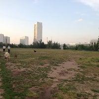 Photo taken at Собачье поле чудес. by Patrick on 5/27/2014
