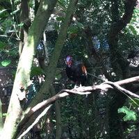 Photo taken at Maharajah Jungle Trek by Rodrigo S. on 2/4/2017