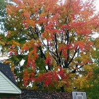 Photo taken at Cat Bus Stop by Beth L. on 10/15/2014