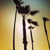 Photo taken at Venice Beach Pier by Kristofer V. on 5/18/2013