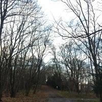 11/29/2017 tarihinde marcus L.ziyaretçi tarafından Volkspark Schönholzer Heide'de çekilen fotoğraf