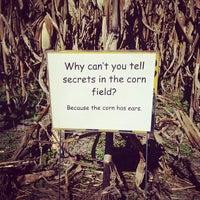 Photo taken at Adkin's Farm Corn Maze by Jeremy H. on 10/14/2012