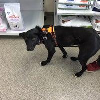 Photo taken at VCA Animal Care Hospital by Kary V. on 1/13/2017
