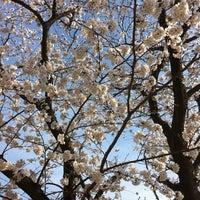 Photo taken at 大谷戸公園 by Hiroshi T. on 3/22/2013
