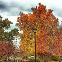Photo taken at University of Kentucky by Sumoflam on 11/16/2016