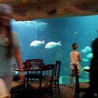 Photo prise au Denver Downtown Aquarium Restaurant par Melissa D. le6/27/2013