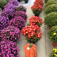 Photo taken at Central NY Regional Market by Dawn G. on 9/21/2013