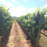 Photo taken at Armstrong Vineyard by Steven M. on 7/28/2013