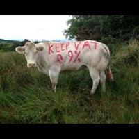 Photo taken at Restaurants Association of Ireland by Adrian C. on 8/15/2013