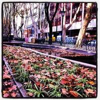 Photo taken at Avenida da Liberdade by Bernardo P. on 12/3/2012