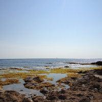 Foto tomada en Les Rotes por Andreu M. el 6/29/2013
