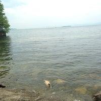 Photo taken at Burlington Waterfront Dog Park by Jessie on 6/22/2013