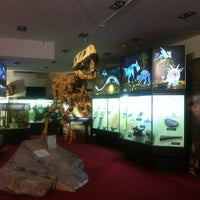 Снимок сделан в Вятский палеонтологический музей пользователем Maxim K. 3/17/2013
