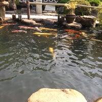 11/8/2012にAaron P.が八雲庵で撮った写真
