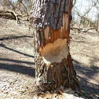 Photo taken at Herb Markle Park by Mike B. on 3/25/2018
