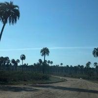 8/16/2013에 Hugo C.님이 Parque Nacional El Palmar에서 찍은 사진