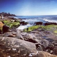 Photo prise au Windansea Beach par Jason Y. le2/23/2013