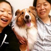 Photo taken at VCA Mission San Jose Animal Hospital by Siyi on 2/21/2015