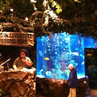 Photo taken at Rainforest Cafe by Mike B. on 12/31/2012