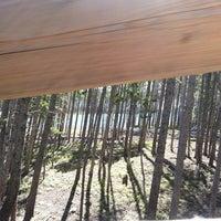 Photo taken at Gold Runner Alpine Coaster by Pete C. on 8/20/2013
