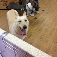 Photo taken at Happy Tails Too by Stephanie M. on 5/28/2013