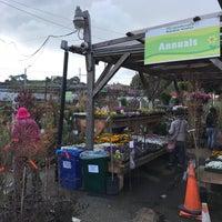 Photo taken at Flowercraft Garden Center by Asi on 3/17/2018