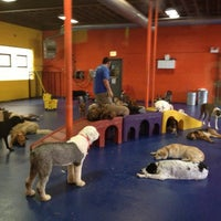 Photo taken at Urban Pooch Canine Life Center by Carol F. on 6/15/2013