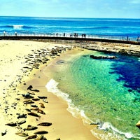 Photo taken at La Jolla Cove by Simone B. on 5/16/2013