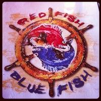 Red fish blue fish key west fl for Seven fish key west fl