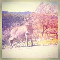 Photo taken at Mount Ida by Burak Ö. on 3/28/2013