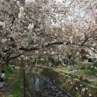 Photo taken at 千本桜 by よたよた on 4/15/2017