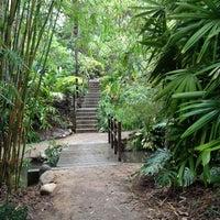 Genial ... Photo Taken At UCLA Mildred E. Mathias Botanical Garden By Zachary M.  On 12