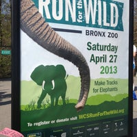 Photo taken at Run for the Wild by Nancy L. on 4/27/2013