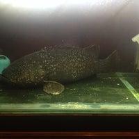 10/27/2013에 Sharon L.님이 禾记深海鱼에서 찍은 사진